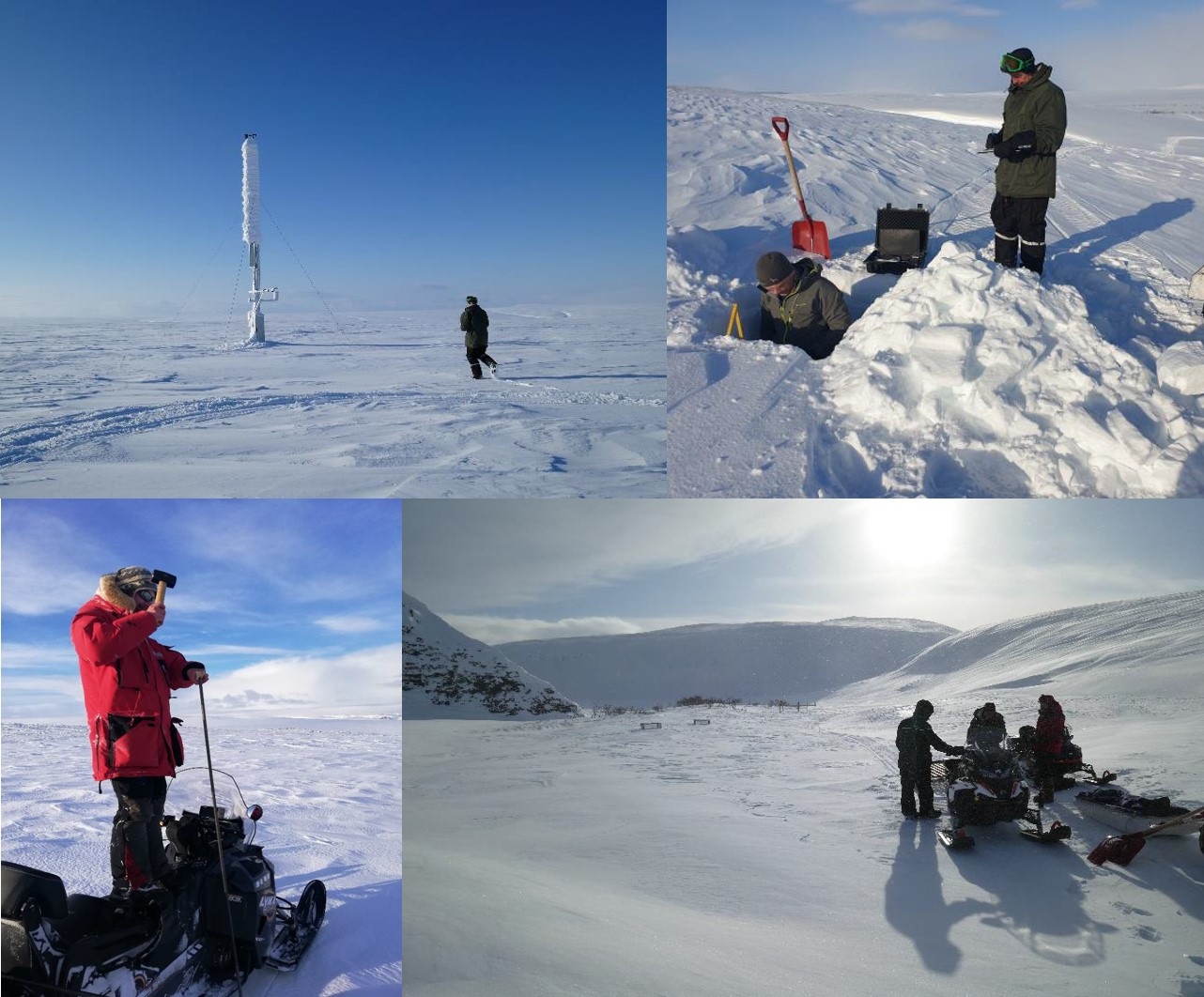 Upper left: COAT weather station at Boazoaivi (Reinhaugen), Upper right: Measurements of snow profile structure, Lower right: Hammering down a snow depth probe, Lower left: Little snow at Vestre Jakobselv study area (1m high small exclosures are visible). All photos: COAT.